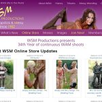 WSM Productions Segpay Discount