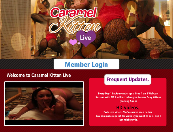 Caramel Kitten Live Receive Discount