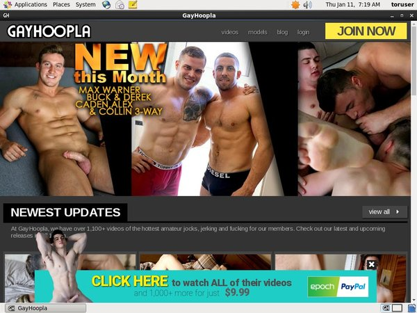 Free Working Gay Hoopla Account